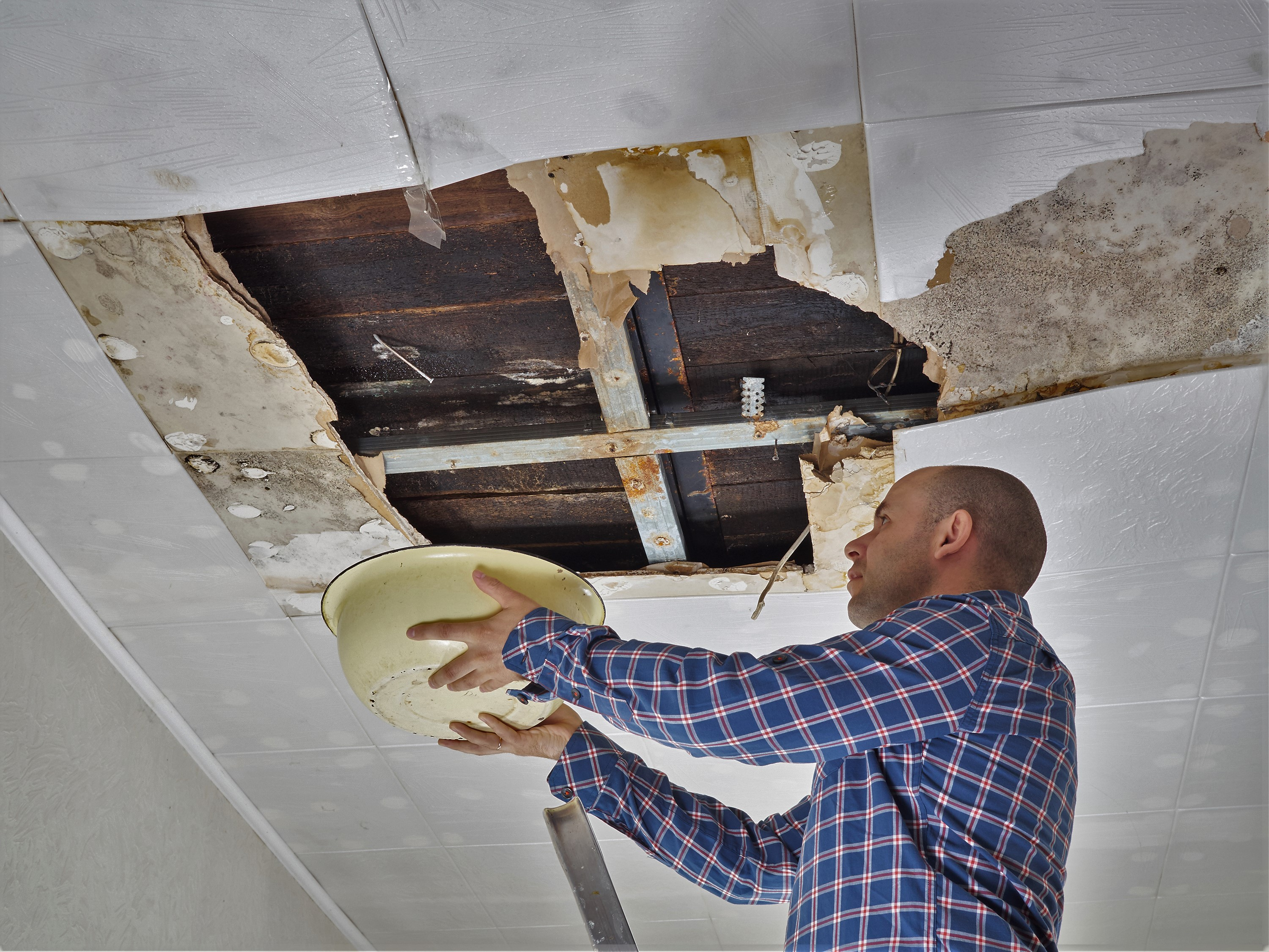 Water Fire Mold Restoration Services